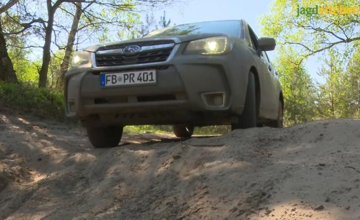 unsere Jagd-Offroad-Serie Teil III