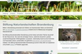 Homepage-Ausriss: Stiftung NLB