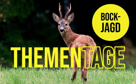 Thementage Bockjagd